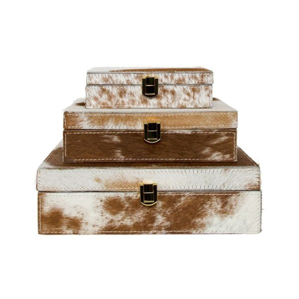 Box Cow  Brown   Leather 25
